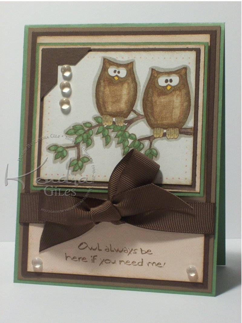 Owl_always_love_you